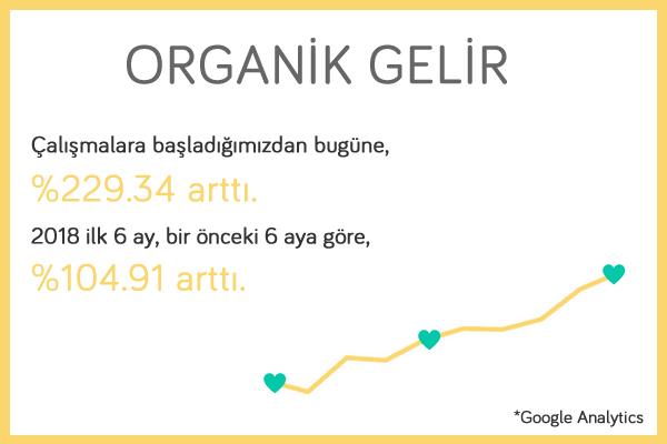 eticaret-organic-gelir