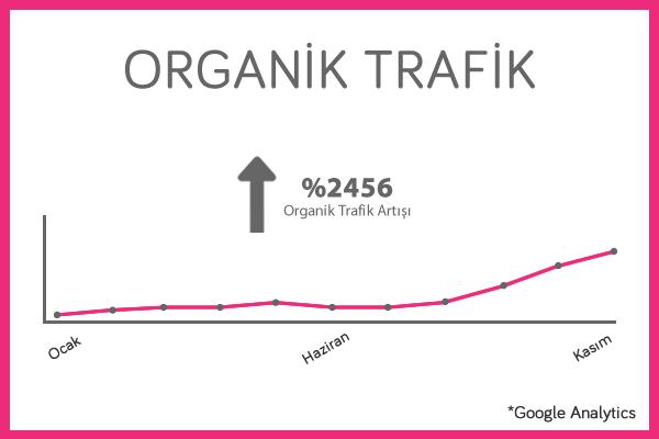 osevio-organik-trafik