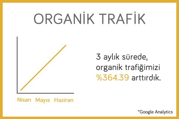 yapikayit-sitesi-organik-trafik
